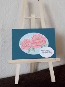 Rose Blau 1