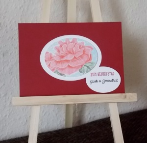 Rose Chili 3