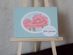 Rose Himmel 5