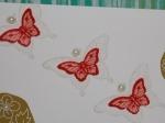 Daphne Schmetterlinge Zoom
