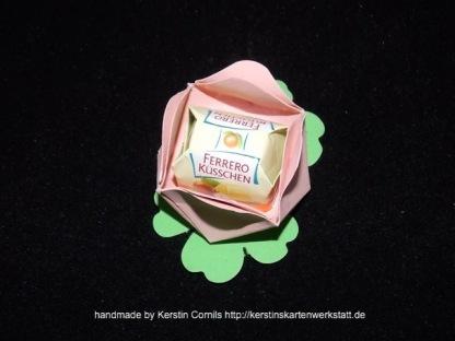 Blüten rosa 1