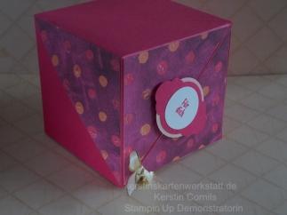 Box mit Fluegeln 2