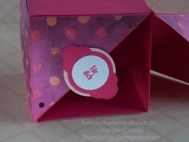Box mit Fluegeln 3