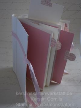 Mini Album rosa 3