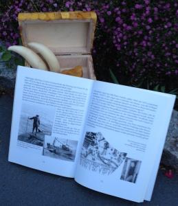 Buch: Von Ording an den Südpol