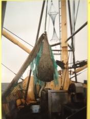 Nordland 2002: Fang kommt an Bord