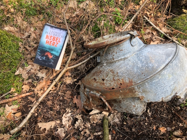 """Das Buch """"Nebelherz"""" von Leonie Haubrich posiert für ein Foto auf dem Waldboden neben einer verrosteten Milchkanne"""