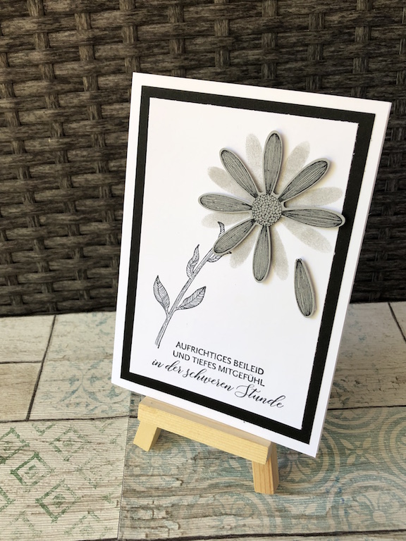 Trauerkarte Gänseblümchen Träne