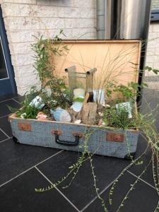 Koffer für den Garten mit Bewuchs von Anja Feuersenger