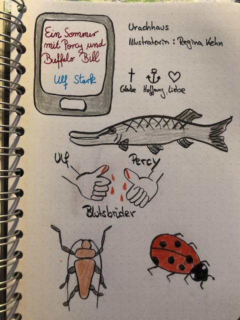 Zu sehen sind Sketchnotes zum Kinderbuch: Ein Sommer mit Percy und Buffalo Bill von Ulf Stark. Da ist ein gezeichneter Hecht, zwei Käfer und zwei Daumen die eine Blutsbruderschaft andeuten.